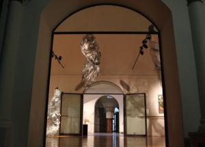 Florence Damne Center - Le Sale del centro di formazione professionale e per corsi di danza amatoriali